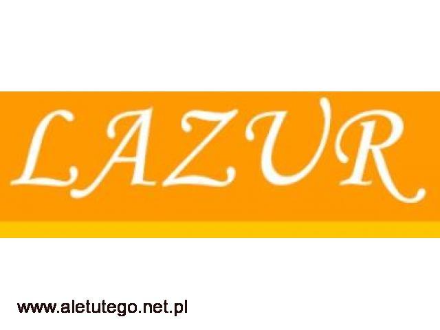 Stylowy leżak składany - sklep LAZUR - 1/2