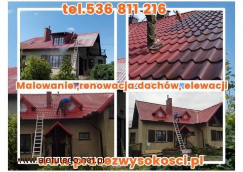 Malowanie ,renowacja dachów, elewacji. Czyszczenie kostki brukowej. Śląsk Małopolska Świętokrzyskie