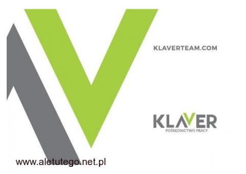 Klaver – praca w Holandii! Produkcja sałatek. Od zaraz!