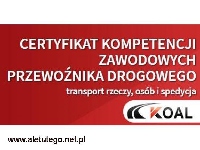 Kurs na Certyfikat Kompetencji Zawodowych Lublin Katowice Rzeszów Kalisz Kielce Konin - 1/1