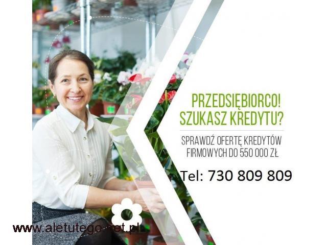 Kredyt i Leasing dla Firm do 550 000 zł, na prostych zasadach - 1/1