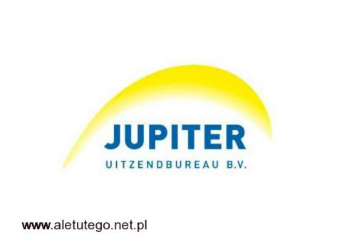 order picker/Holandia-Venlo