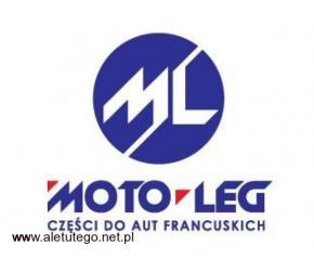 Moto-Leg – rozrząd Renault Megane od renomowanych producentów