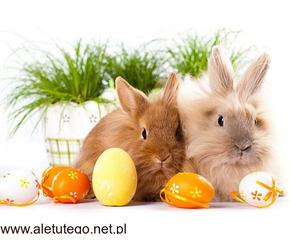 Rodzinne Święta Wielkanocne 10-13.03.2020  w Hotelu Fajkier ***