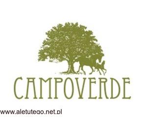 Centrum konferencyjne – Łódź – ośrodek Campoverde
