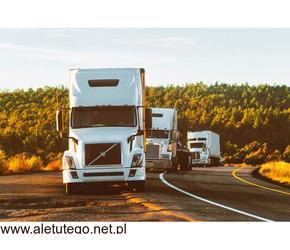Cysterny spożywcze transport | Stando