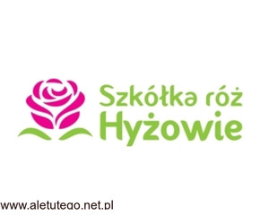 Sadzonki róż - Szkółka Róż Hyżowie