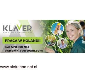 Praca na produkcji- Holandia- atrakcyjne zarobki- od zaraz- dla każdego !!