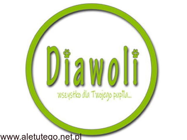Produkty Herbal Pets w sklepie zoologicznym - Diawoli