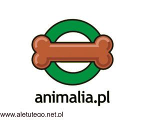 Siodła dla konia | Animali