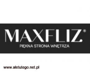 Łazienki Opole - maxfliz.pl