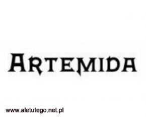 Sala weselna - artemida.lublin.pl