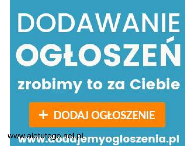 Twoja oferta na 1000 portalach ogłoszeniowych - 1/1