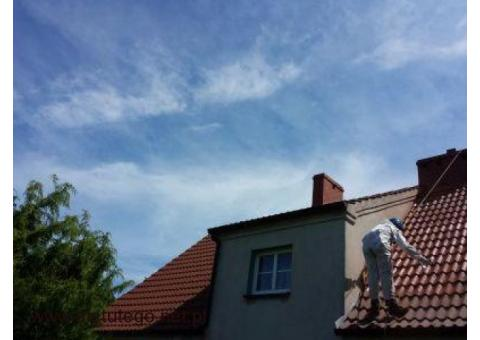 Mycie i malowanie dachów