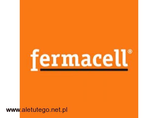 Fermacell - producent płyt gipsowo-włóknowych - 1/1