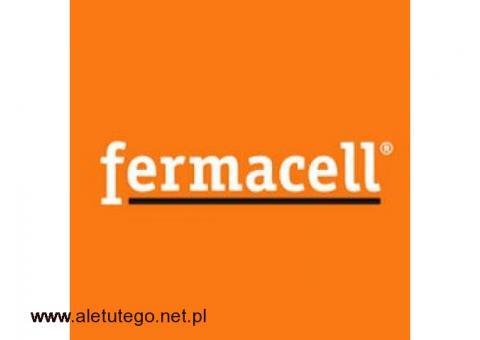 Fermacell - producent płyt gipsowo-włóknowych