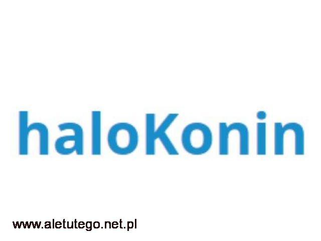 Lokalny portal: HaloKonin - 1/1