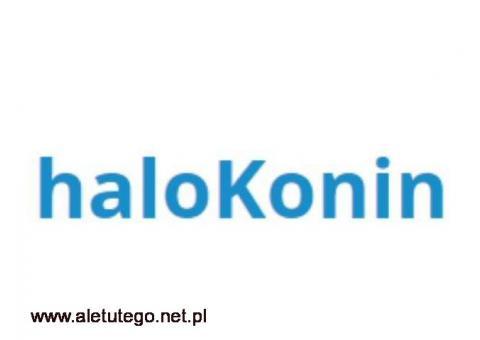 Lokalny portal: HaloKonin