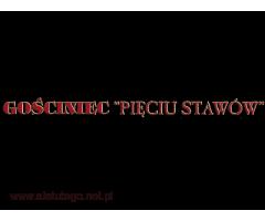 Gościniec Pięciu Stawów – wygodne pokoje w Bieszczadach