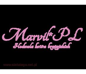 Marvil - sprzedaż kotów brytyjskich niebieskich