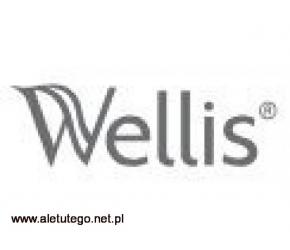 Sauna - Wellis