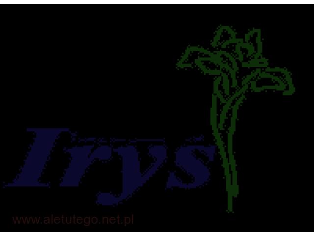 Irys – sprawdzona  hurtownia sztucznych kwiatów - 1/1