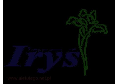 Irys – sprawdzona  hurtownia sztucznych kwiatów